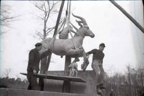 ARH NL Koberg 607, Fabeltier Skulptur von Vierthaler in der Eilenriede, Hannover, wohl 1951