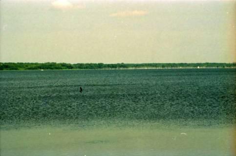 ARH BA 2794, Bundesumweltminister Trittin zu Besuch am Steinhuder Meer, 2001