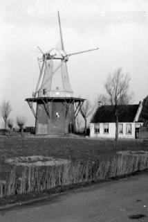 ARH NL Dierssen 0102/0022, Mühle in der Nähe von Groningen, um 1945