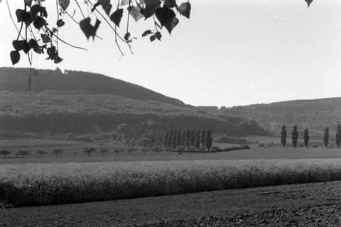 ARH NL Dierssen 0103/0020, Blick zum Ebersberg, 1946