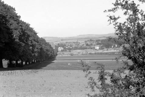 ARH NL Dierssen 0103/0023, Blick vom Ebersberg auf Springe, 1946