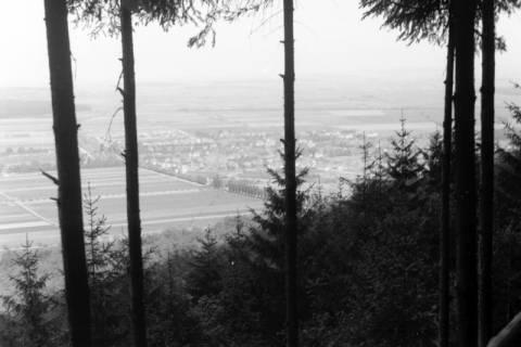 ARH NL Dierssen 0103/0025, Blick vom Ebersberg auf Springe, 1946