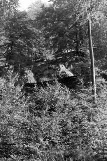 ARH NL Dierssen 0105/0012, Felshöhlen im Saupark, zwischen 1946/1947