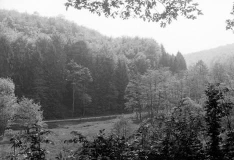 ARH NL Dierssen 0107/0013, Pfingstwanderung am Süntel, zwischen 1946/1947