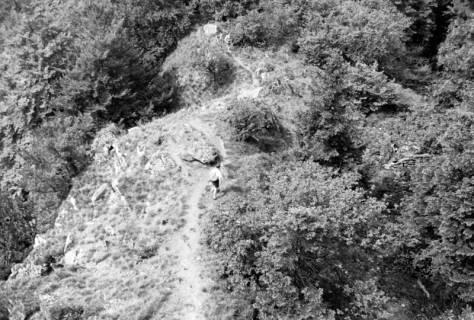 ARH NL Dierssen 0107/0018, Pfingstwanderung am Süntel, zwischen 1946/1947