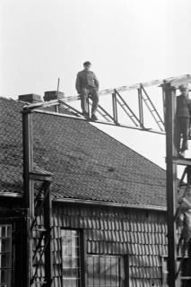 ARH NL Dierssen 0111/0010, Wedekind baut Halle bei Stedler, 1947
