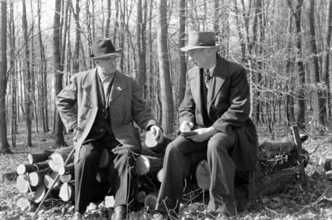 ARH NL Dierssen 0114/0026, Vater von Dierssen und Hr. Beine im Kniggeschen Forst, 1948