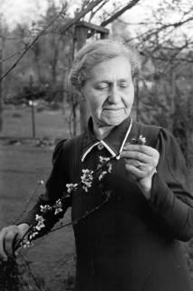 ARH NL Dierssen 0116/0005, Luise Schmull, 1948