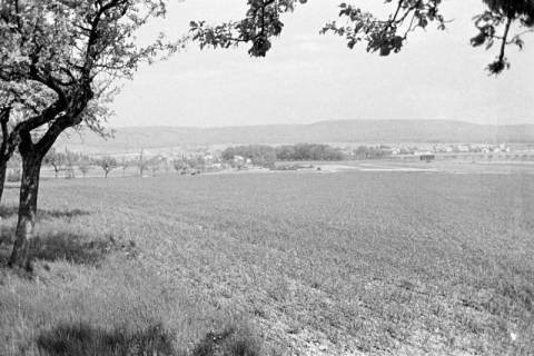 ARH NL Dierssen 0118/0025, Fernsicht auf Springe, 1948