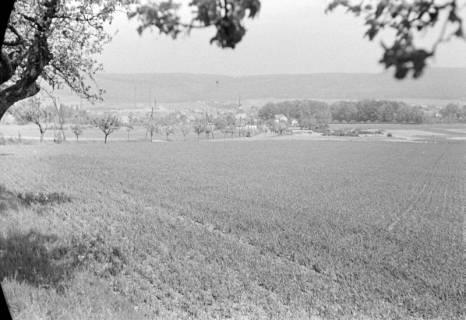 ARH NL Dierssen 0119/0001, Fernsicht auf Springe, 1948