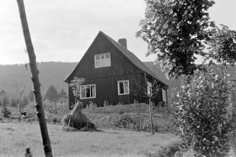 ARH NL Dierssen 0121/0014, Haus der Familie Conrad, 1948