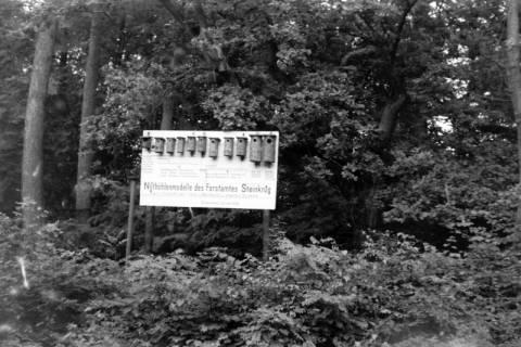 ARH NL Dierssen 0123/0016, Tafel und Nistkästen des Forstamtes Steinkrug, 1948