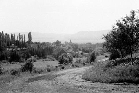 ARH NL Dierssen 0125/0003, Blick auf Völksen, 1948