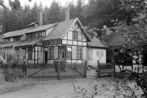 "ARH NL Dierssen 0126/0004, AWO-Heim ,,Hohe Warte"", 1948"