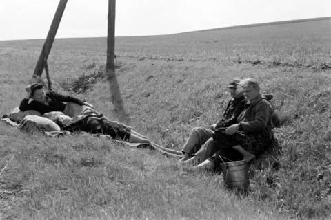 ARH NL Dierssen 0126/0020, Flüchtlinge im Straßengraben, 1948