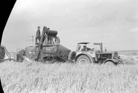 ARH NL Dierssen 0126/0025, Mähdrescherbinder, 1948