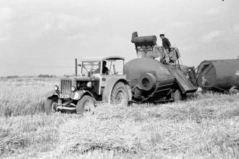 ARH NL Dierssen 0127/0004, Mähdrescherbinder, 1948