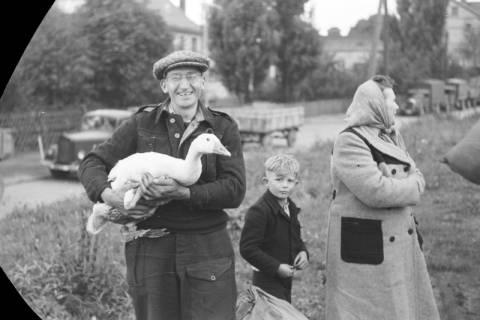 ARH NL Dierssen 0127/0007, Flüchtlingszug via Schleswig-Holstein kommend, 1948