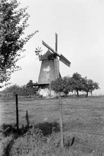ARH NL Dierssen 0128/0004, Windmühle, 1948