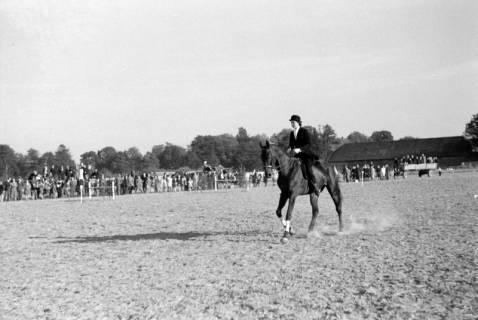 ARH NL Dierssen 0132/0005, 1. Reiterfest, 1948