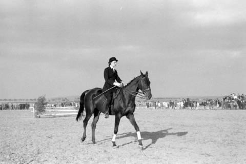ARH NL Dierssen 0132/0006, 1. Reiterfest, 1948