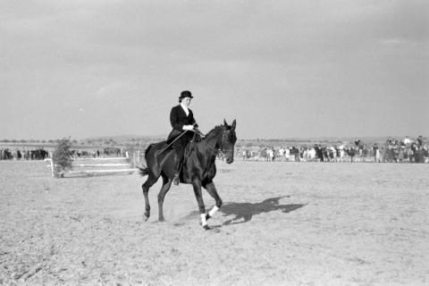 ARH NL Dierssen 0132/0007, 1. Reiterfest, 1948