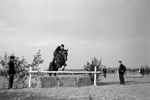 ARH NL Dierssen 0132/0008, 1. Reiterfest, 1948