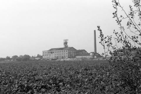 ARH NL Dierssen 0132/0020, Kalibergwerk, 1948