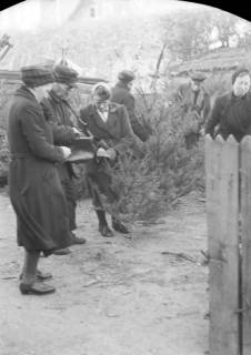 ARH NL Dierssen 0135/0010, Verkauf von Weihnachtsbäumen, Springe, 1948