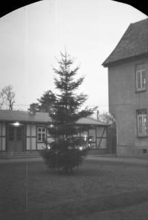 ARH NL Dierssen 0136/0003, Weihnachtsbaum vor dem Rathaus, Springe, 1948