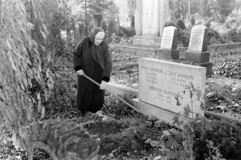 ARH NL Dierssen 0136/0011, Alte Frau harkt ein Grab, Springe, 1948