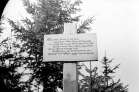 ARH NL Dierssen 0138/0008, In der Jägerallee, Springe, 1949