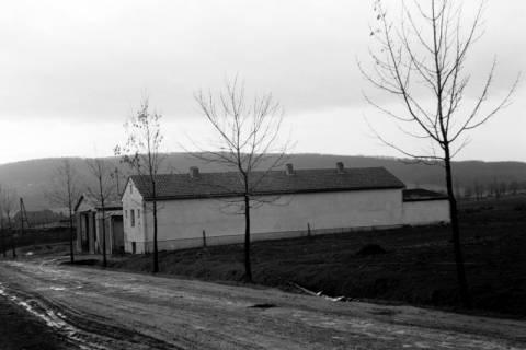 ARH NL Dierssen 0139/0011, Lagerschuppen von Felix Tief, Springe, 1949