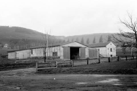 ARH NL Dierssen 0139/0013, Lagerschuppen von Felix Tief, Springe, 1949