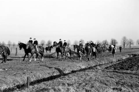 ARH NL Dierssen 0140/0014, Reiterausflug zum Saupark, Springe, 1949