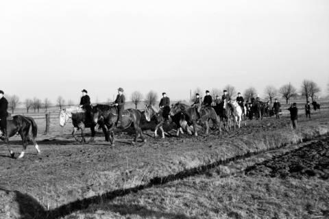 ARH NL Dierssen 0140/0015, Reiterausflug zum Saupark, Springe, 1949