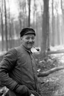 ARH NL Dierssen 0140/0020, Holzfäller im Saupark, 1949