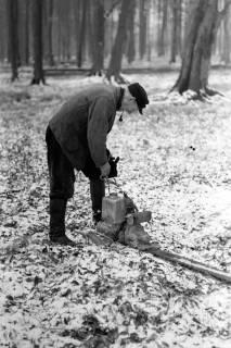 ARH NL Dierssen 0140/0021, Holzfäller im Saupark, 1949