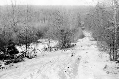 ARH NL Dierssen 0143/0009, Schneeaufnahmen, Springe, um 1949