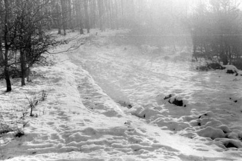 ARH NL Dierssen 0143/0010, Schneeaufnahmen, Springe, um 1949