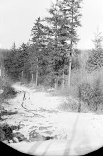 ARH NL Dierssen 0143/0011, Schneeaufnahmen, Springe, um 1949
