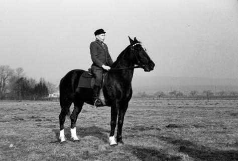 ARH NL Dierssen 0146/0004, Reiterverein, Springe, um 1949