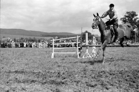 ARH NL Dierssen 0149/0005, Reiterfest, 1949