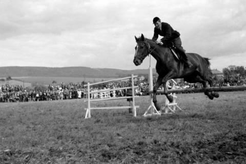 ARH NL Dierssen 0149/0006, Reiterfest, 1949