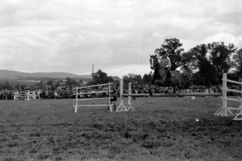 ARH NL Dierssen 0149/0007, Reiterfest, 1949