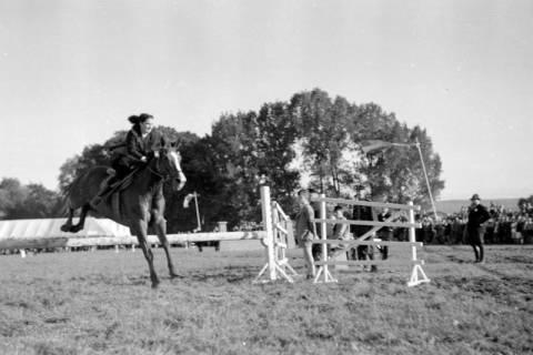 ARH NL Dierssen 0149/0013, Reiterfest, 1949