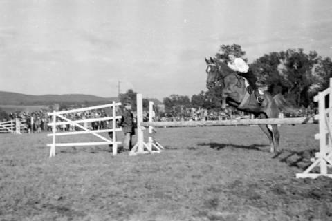ARH NL Dierssen 0149/0014, Reiterfest, 1949