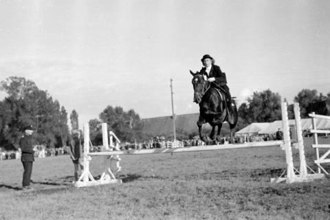 ARH NL Dierssen 0149/0015, Reiterfest, 1949