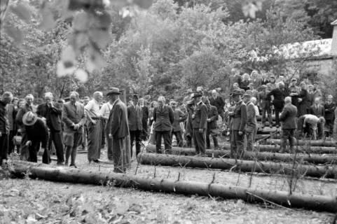 ARH NL Dierssen 0152/0002, Forstarbeiter - Betriebsfeier, 1949