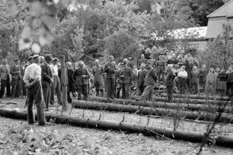 ARH NL Dierssen 0152/0003, Forstarbeiter - Betriebsfeier, 1949